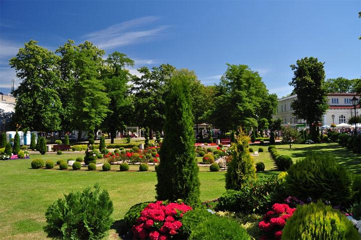 Villa Rosa Polen